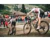 Cubierta MTB XC Trail Vittoria Mezcal III TNT 29x2.25